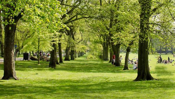 um dos muitos parques em Edimburgo