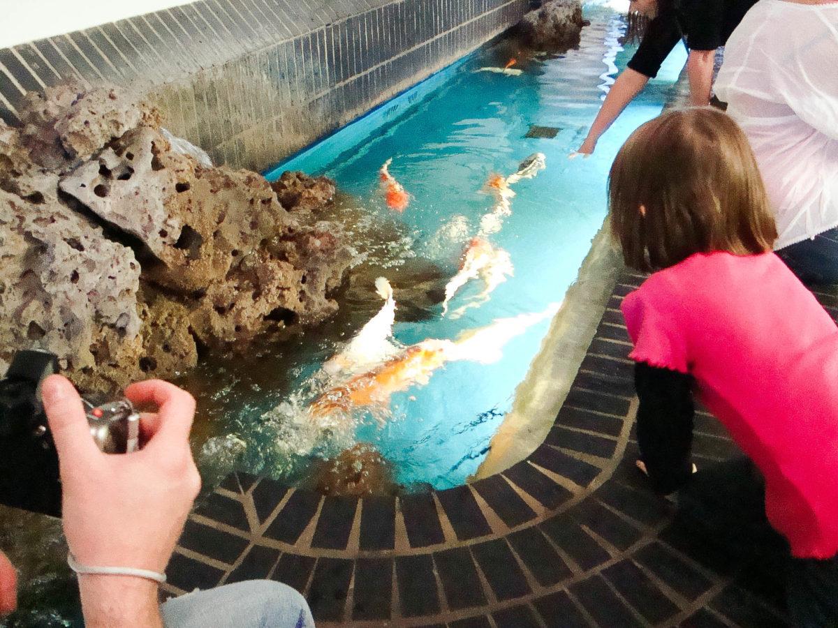 Berlim - aquário 3