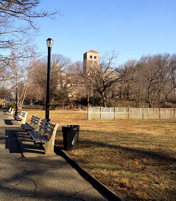 Da entrada do parque à porta do museu, são 10 minutos de caminhada.